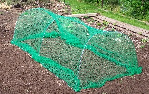buffet buster, pest, control, netting, garden pests